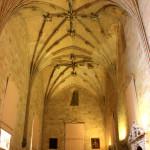 Old Cathedral of Salamanca 14