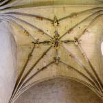 Old Cathedral Salamanca 8