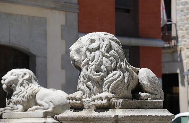 Lions avila