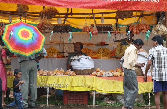 Cucumber festival Goa market