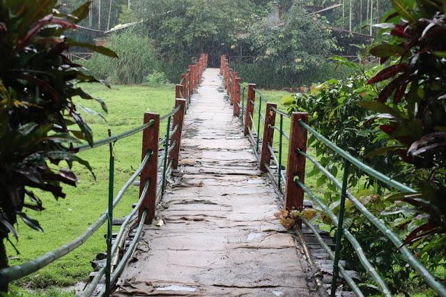 Spice Plantation 1 Must visit Goa restaurants