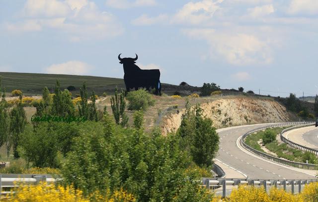 road-drive-from-madrid-to-zaragoza4